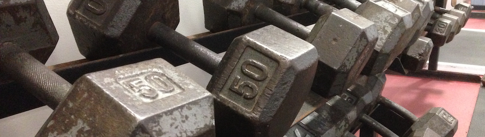 northview fitness center weights