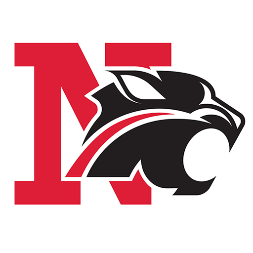Northview Public Schools N with Wildcat. Used as the Websites FavIcon.